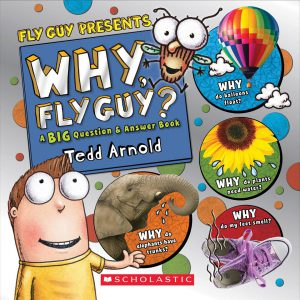 why fly guy